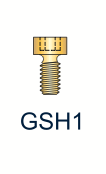 1 Series Gold Hexed Screw