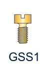 1 Series Gold Slotted Screw