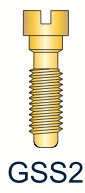 2 Series Gold Slotted Screw