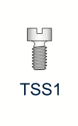 Titanium Slotted Screw Series 1
